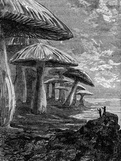 A Journey to the Center of the Earth (French: Voyage au centre de la Terre, 1864 novel by Jules Verne)