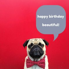 Happy Birthday Beautiful! click on this pic for more funny birthday wishes!