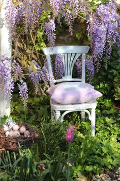 .Sitting with the scent of wisteria~ remember it can be invasive