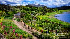 Inverewe Gardens on Scotland's West Coast is an easy day trip from Inverness