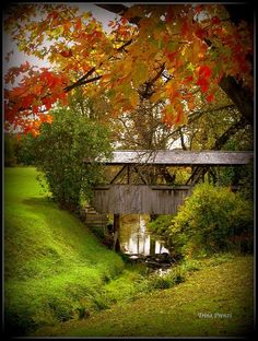 Little Covered Bridge ~ Michigan ~ Photo taken by Trina Prenzi on a road trip viewing the Fall colors! Old Bridges, Old Barns, Covered Bridges, Monuments, Paths, Beautiful Places, Around The Worlds, Exterior, Pictures