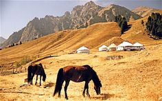 Central Asia: on the Silk Road - Telegraph