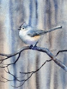 "Daily Paintworks - ""TUFTED TITMOUSE bird watercolo..."" by Barbara Fox"