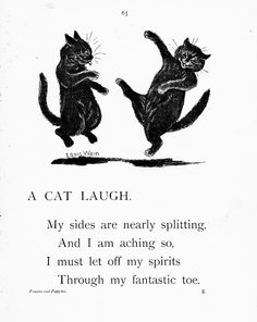 Happiness is...: A Cat Laugh