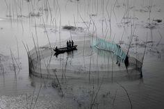 © Yann Arthus-Bertrand - Fishing nets in the area of Dhaka, Bangladesh (23°43' N, 90°20' E).