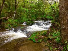 Feel the calm and the quiet of the #Rivers of the #Smokies.