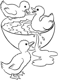 duck swimming in a bowl coloring pages - Drawing And Colouring For Kids