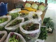 the best farmers markets