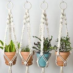 Hand knotted macrame plant hanging with 100% cotton rope. Handmade in Chicago. This is the perfect macrame plant hanger for any plant lover. The design is full of intricate details including a covered ring at the top, helix knots and several other designs. Hang on a hook off the wall or s