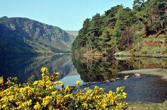 Wicklow, Powerscourt and Glendalough Tour from Dublin