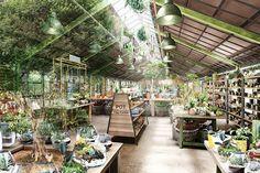 """全ての人が楽しめる植物の楽園。株式会社ユニバーサル園芸社 本社ガーデンセンターは""""ザ ファーム ユニバーサル""""として生まれ変わります。"""