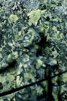 Amazing Body Art Inspired by Nature - My Modern Metropolis Fine art body painter Johannes Stötter