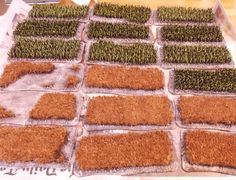 Lard Island News Chain Of Command, Game Terrain, Wargaming Terrain, Small World, Model Trains, Saga, Diy And Crafts, Grass, Projects To Try