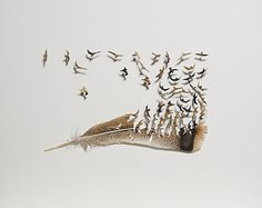 Chris Maynard, is an American artist who carves small dioramas using only the feathers of birds.
