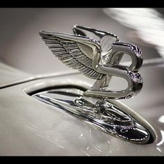 Bentley Hood Ornament- dynamic..Re-pin....Brought to you by Agents of #CarInsurance at #HouseofinsuranceEugene