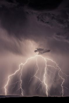 Shock and Awe.By Larry Reeves[via/more] Ride The Lightning, Thunder And Lightning, Lightning Strikes, Lightning Storms, Weather Storm, Wild Weather, Tornados, Thunderstorms, Sky Gazing