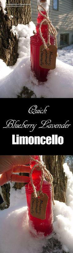 Blueberry Lavender Limoncello ~ Sumptuous Spoonfuls #Blueberry #Limoncello #overnight