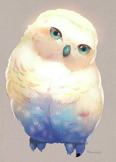 Owl Art, Bird Art, Cute Animal Drawings, Cute Drawings, Cute Creatures, Fantasy Creatures, Creature Drawings, Cute Birds, Cute Art