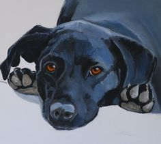 Animal/Dog Oil Painting by Susan Nall