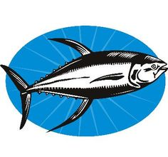 1000 images about premium platinum omega 3 on pinterest for Fish oil benefits for women