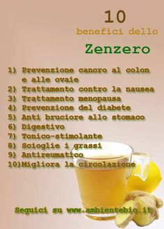 Zenzero e limone Wellness Fitness, Health And Wellness, Health Fitness, Mini Desserts, Natural Cures, Natural Health, In Natura, Detox Tea, Detox Drinks