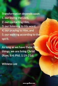 Transformation depends upon our loving the Lord, our contacting Him, our listening to His word, our praying to Him, and our walking according to the spirit; as long as we have these five things, we are living Christ (Rom. 8:4; Phil. 1:19-21a). Witness Lee
