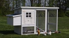 Kippenhok Julia met legnest is een universeel hok met afsluitbaar nachthok met zitstok, handige schoonmaaklade en een overdekte ren met ruime deur. Voor 2-4 kippen.