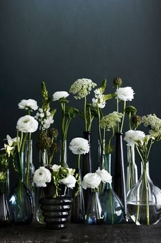 Vintage and modern glass vases with beautiful white and green flowers. Great arrangement for studios.