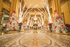 See spectacular lights, enjoy broadway to ballet, sing carols in Jackson Square - there's so much to see and do this December in New Orleans. Christmas Things To Do, Open On Christmas, Christmas Brunch, Pink Christmas, Holiday Fun, Christmas Decor, Festive, Merry Christmas, New Orleans Vacation