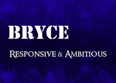 Bryce - Responsive and Ambitious