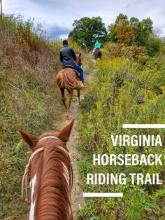 Horseback Riding Trail in Front Royal, Virginia Horseback Riding Trails, Trail Riding, Horse Riding, Front Royal Virginia, Screen Time For Kids, Beautiful Places In The World, Rafting, Kayaking, Travel Inspiration