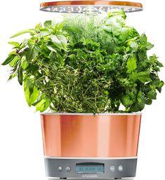 Aerogarden Bounty Elite Wifi Herb Seeds Herbs Seed Pods 400 x 300
