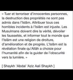 Tuer et terroriser d'innocentes personnes, la destruction des propriétés ne sont pas admis dans l'islam (...)