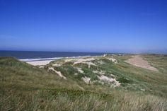 Dünen an der Nordsee bei Ringköbing