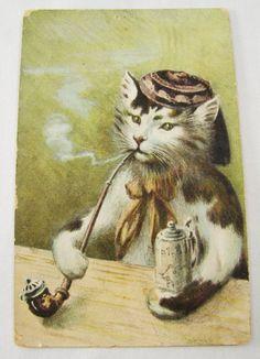 Antique Chinese Opium Pipe Smoking Beer Drinking Cat Postcard 1907 Vancouver | eBay