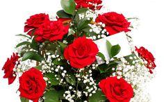 Bukiet, Czerwonych, Róż, Gipsówka