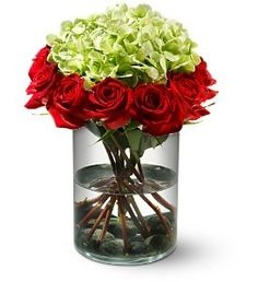 This stunning arrangement features a green hydrangea nestled in a bed of red roses.   $99.99