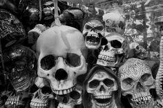 Skulls, Skulls, Lots Of Skulls.