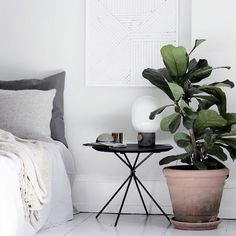 Neutral colour scheme with minimal decor