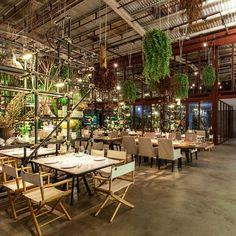 Hipótesis utiliza plantas y objetos de desecho para crear interior del…