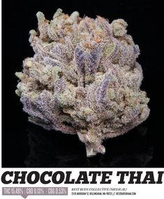 Loved chocolate thai back in the day Buy Edibles Online, Buy Cannabis Online, Buy Weed Online, Thc Oil, Cannabis Oil, Cannabis Edibles, Growing Weed, Cbd Oil For Sale, Marijuana Plants