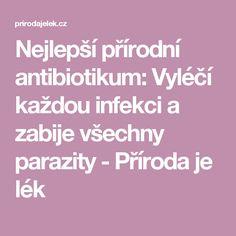 Nejlepší přírodní antibiotikum: Vyléčí každou infekci a zabije všechny parazity - Příroda je lék Healing Herbs, Health, Health Care, Medicinal Plants, Herbal Medicine, Salud