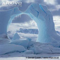 Eroded iceberg at Cape Hallett, Antarctica