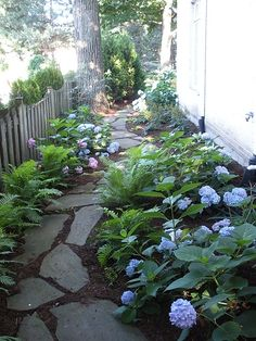 traditional landscapeyard find more amazing designs on zillow digs for side of