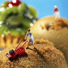 芝刈り風ミニチュア:miniature