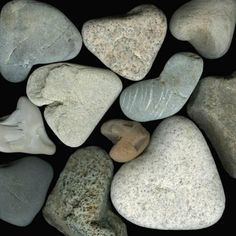 A Collage of Heart-Shaped Beach Stones Photographic Print by Josie Iselin at AllPosters.com