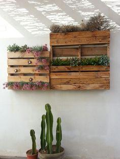jardin vertical sobre palet en aguamarga