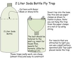 Homemade fly trap