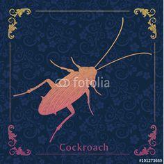 Vector: Cockroaches,decorative picture