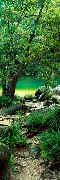 Mossman Gorge. Queensland Australia - Tropical Paradise